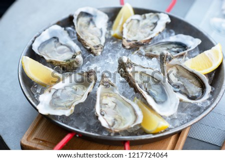Fresh oysters with lemon's slices in ice. Restaurant delicacy. Saltwater oysters dish. #1217724064