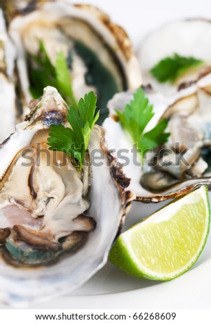 Fresh oysters with lime