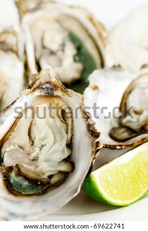Fresh oysters with lime - stock photo