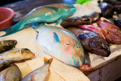Fresh parrot fish on traditional seafood market on Boracay island in Philippines