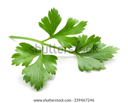 Shutterstock Fresh parsley isolated on white