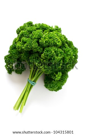 Fresh parsley on pure white background