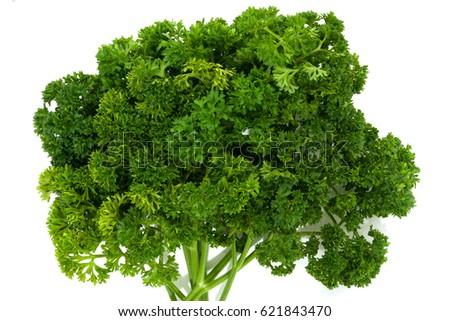 Fresh parsley on white background #621843470
