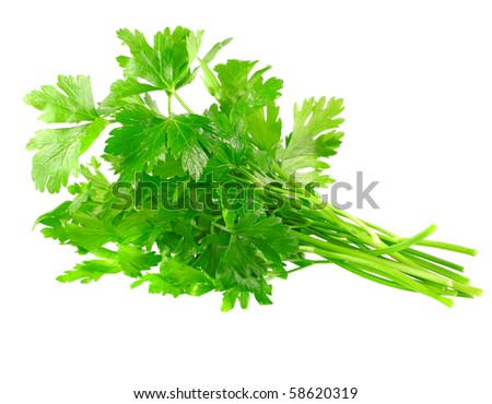 Fresh parsley on white background. Isolated over white - stock photo