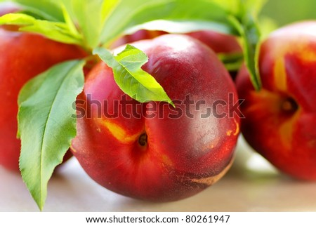 fresh peach fruits with green leaves on green background