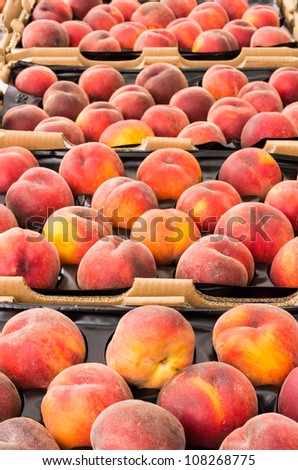 Fresh peaches in trays on display at the farmers market