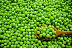 Fresh peas in wooden spoon on green peas.