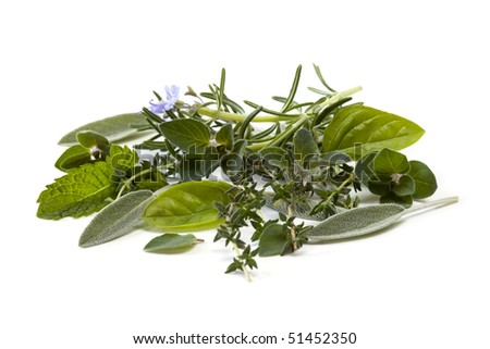 Fresh-picked herbs, over white background.  Includes basil, mint, rosemary, sage, oregano and thyme.