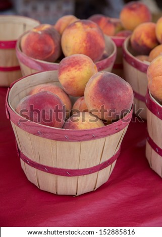 Fresh Picked Peaches in a Basket at a Farmers Market