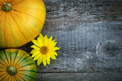 Fresh pumpkins decorated  sun flower on wooden table, top view