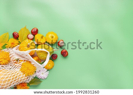 Fresh pumpkins in shopping eco-friendly mesh bag, autumn leaves on color background. Autumn composition. thanksgiving, fall, halloween concept. Concept Organic vegetable harvest.