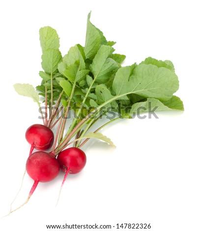 Fresh radish. Isolated on white background