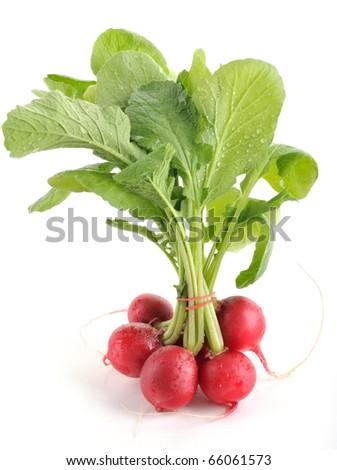 Fresh radishes isolated on white background.