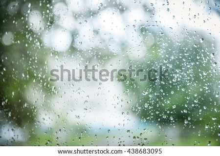 Fresh rain splash drops on a window with background green nature in Blur. drop window glass with blur tree background