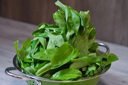 Fresh ramson in a bowl. Healthy food wild garlic ramson or bear garlic