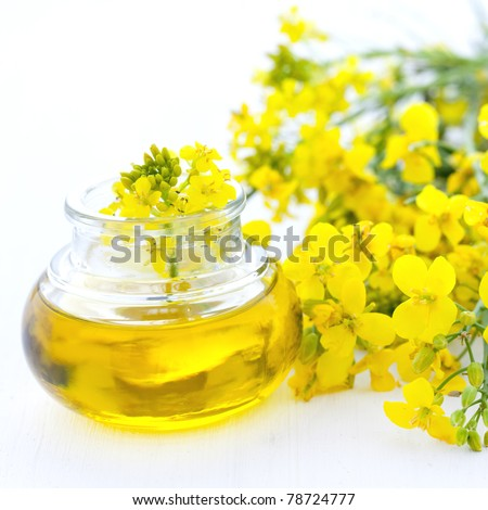 fresh rapeseed oil in a bottle