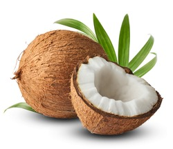 Fresh raw coconut with palm leaves isolated on white background. High resolution image
