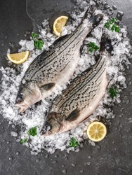 Fresh raw fishes with spices, lemon on ice over dark stone background. Creative layout made of fish, Seafood, top view, flat lay