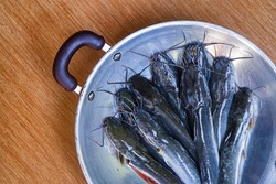 fresh raw ikan lele or catfish in a pan with copy space
