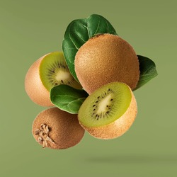 Fresh raw kiwi with leaves falling in the air isolated on green background. Food levitation concept. High resolution image