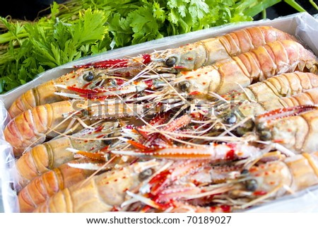 Fresh raw Langoustines from the market .