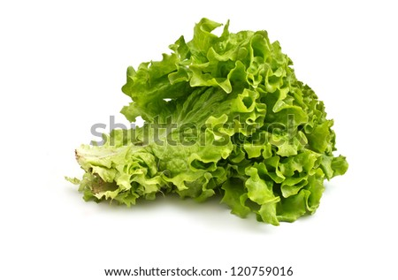 Fresh raw lettuce isolated on white background