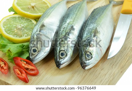 Fresh raw mackerel fish and lemon