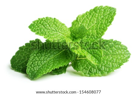 Shutterstock Fresh raw mint leaves isolated on white background