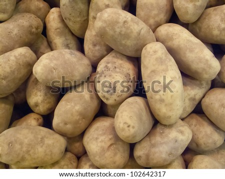 fresh raw potato pattern background