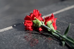 fresh red carnations on a marble black monument