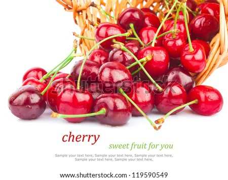 Fresh red cherries in wicker basket isolated on white background & text