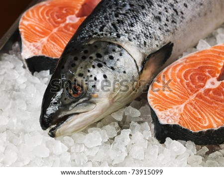 Fresh red fish on ice