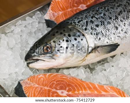 Fresh red fish on ice