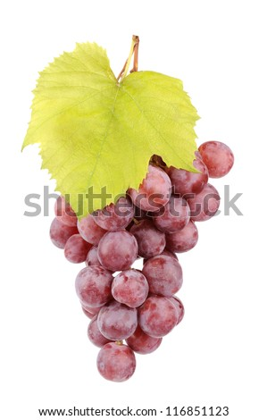 Fresh red grapes with leaves isolated on white