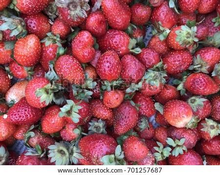 fresh red strawberries from mahabaleshwar #701257687