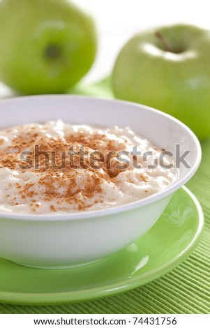 fresh rice pudding in a bowl with cinnamon