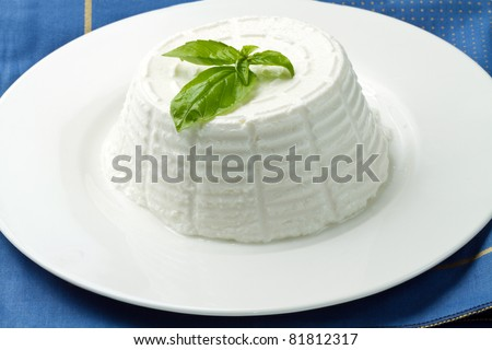 fresh ricotta with basil leaf