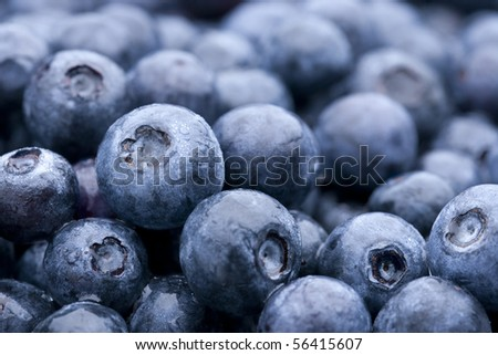 Fresh rinsed blueberries horizontal view. Critical focus on middle left blueberry. Selective focus and shallow depth of field.