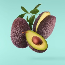 Fresh ripe avocado with leaves falling in the air. Cut and whole avocado isolated on turquoise background