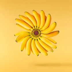Fresh ripe baby bananas falling in the air isolated on yellow background. Food levitation concept. High resolution image
