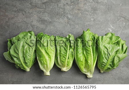 Fresh ripe cos lettuce on gray background, top view #1126565795
