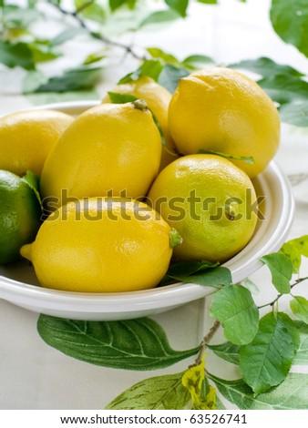 Fresh ripe lemons in bowl on table