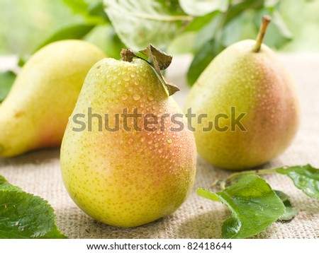 Fresh ripe pears on natural  background. Selective focus