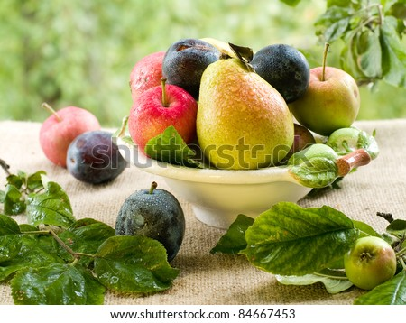 Fresh ripe pears, plums and apples in bowl on natural background. Selective focus