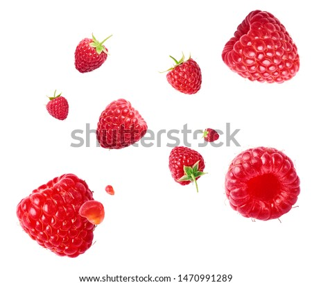 Fresh ripe raspberries flying in the air isolated on white background. Concept of food levitation, high resolution image