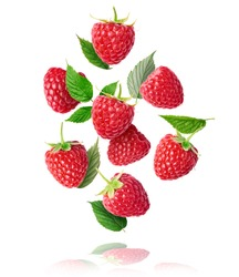 Fresh ripe raspberries, green leaves and flowers flying in the air isolated on white background. Concept of food levitation, high resolution image
