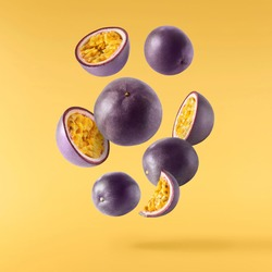 Fresh ripe raw passion fruit falling in the air isolated on yellow background. Zero gravity and food levitation concept. High resolution