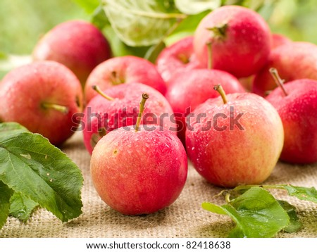 Fresh ripe red apples on natural background. Selective focus
