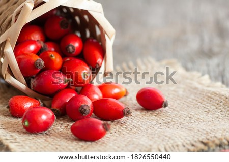Fresh ripe rose hips in basket on burlap sack, raw briar berries or dog rose fruits with seed, healthy food concept ( rosa canina ) Stock photo ©