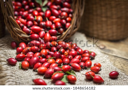 Fresh ripe rose hips in basket on the rustic background, close-up photo. Healthy nutrition concept. Stock photo ©